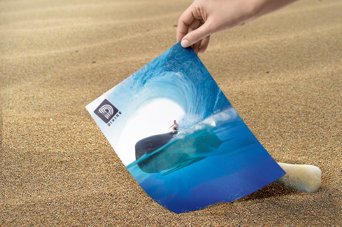 Campagne de publicité Bayonne surf par Birds communication
