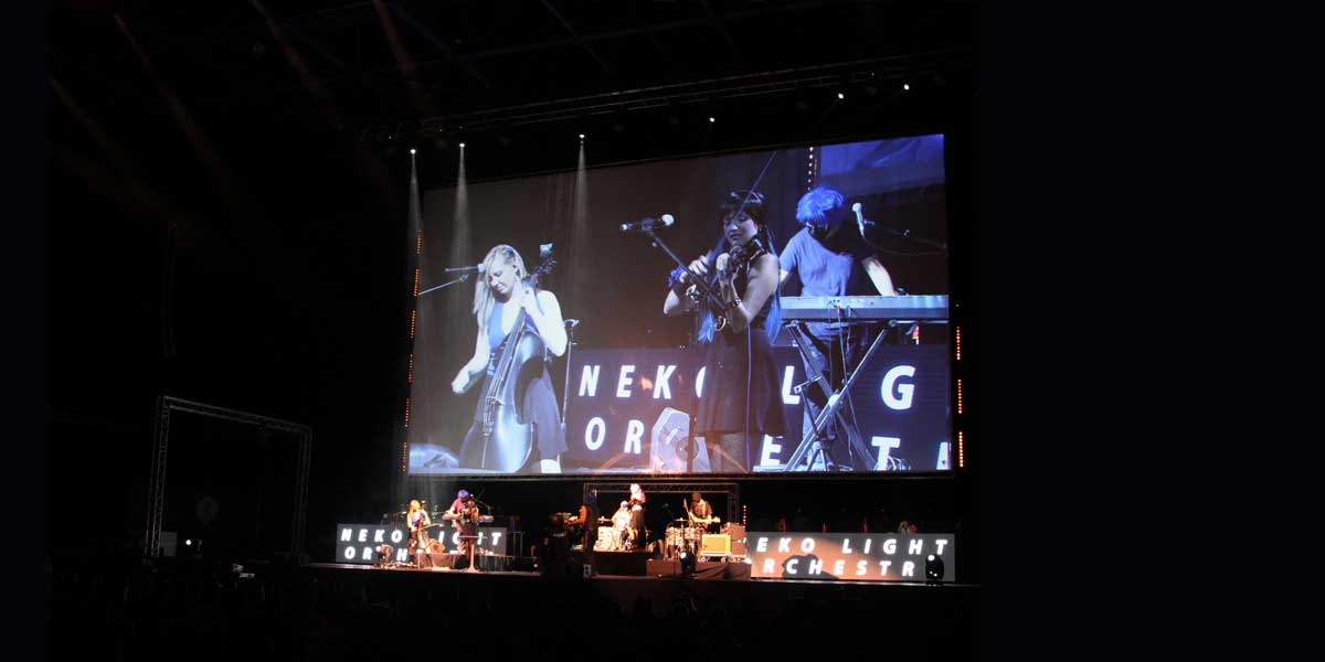 Concert Neko light orchestra - Birds communication
